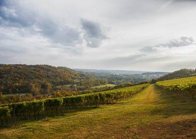 Weinwanderung in der Toskana Bad Sulza