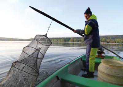 Fischerei Stedtener MühleStedten