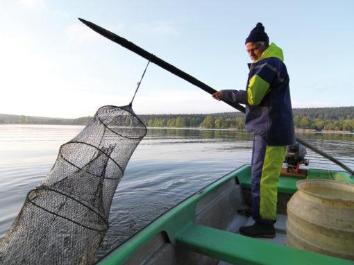 Fischerei Stedtener Mühle<br>Stedten