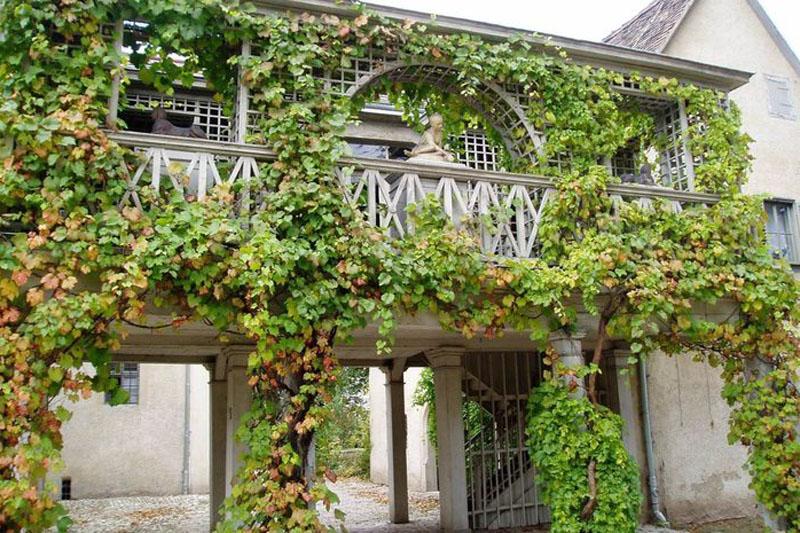 Schloss Tiefurt | © Weimarer Land Tourismus