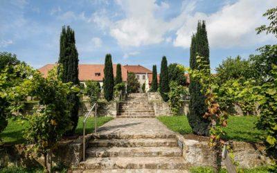Weingenuss im Schloss