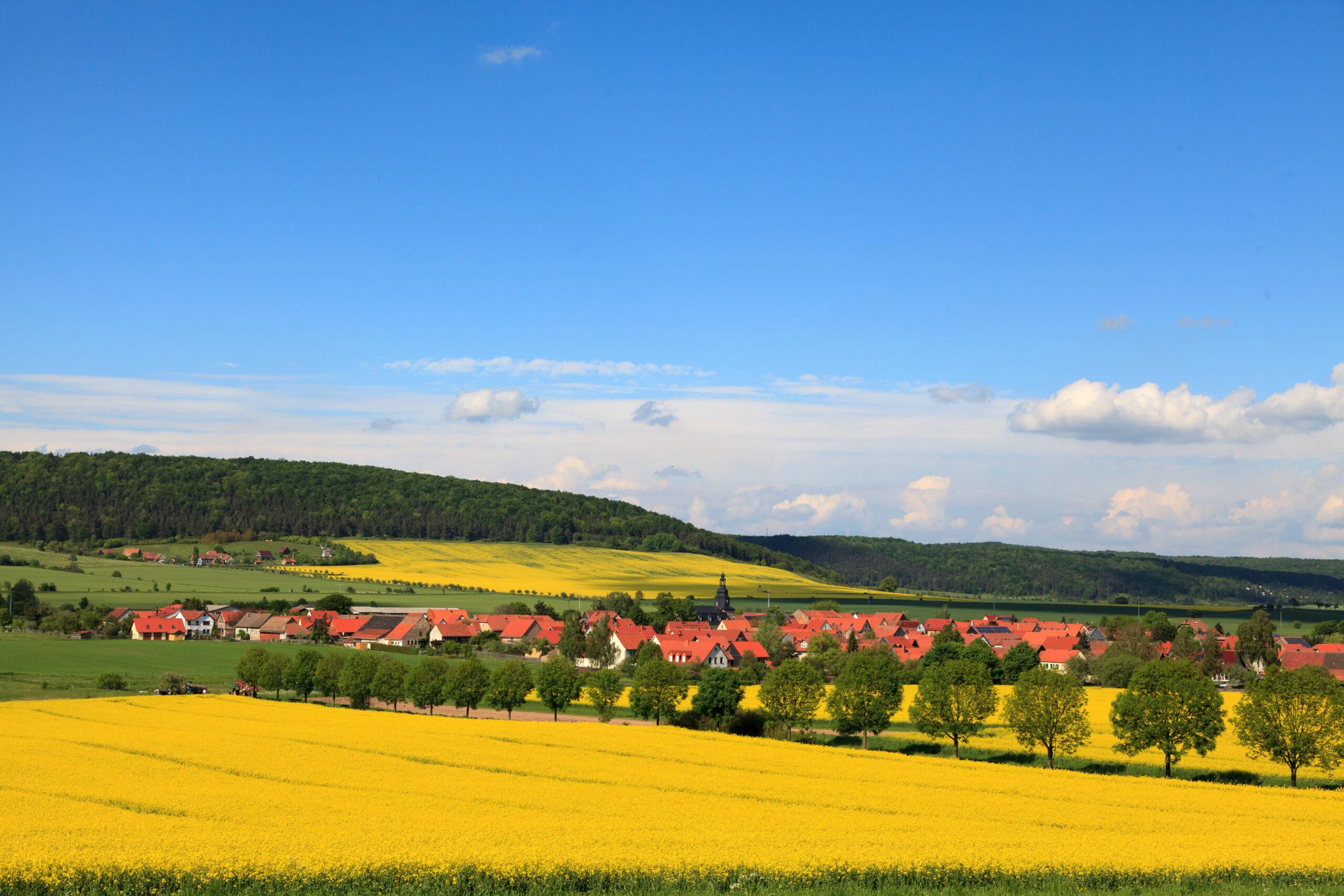 Weingut Weimar